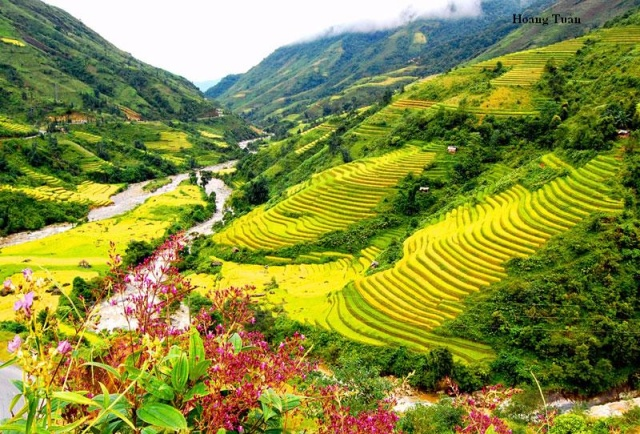 5 must-go places in Sapa